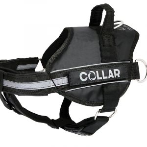 Collar – Police hundsele